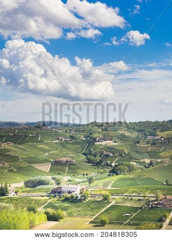 Langhe vineyards landscape in piedmont italy in autumn