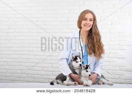 Professional female veterinarian in smiling at camera, caring about health of two husky dogs with blue eyes. Doctor in white embracing two cute puppy husky, who lying and waiting for procedure.