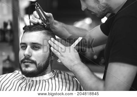 Monochrome shot of a young bearded man getting his hair styled by a professional barber.