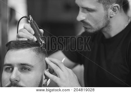 Black and white shot of a professional barber at work cutting hair of his client with a clipper.