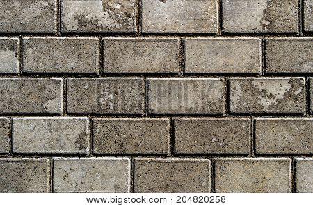 Pavement. Sidewalk tile background. Pavement tile. Top view. Closeup