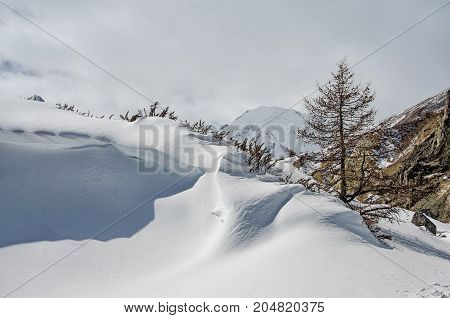 Fresh snow cover in dunes at closeup, a winter landscape