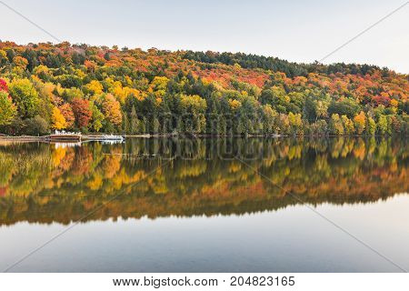 Autumn scene trees with reflections on lake. Beautiful and tranquil scene in Ontario Canada in the fall season along a lake with smooth water