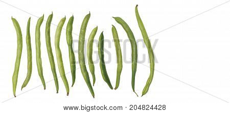 String bean raw food clipping paths isolate on wood white sort spacing and macro photo focus at center around are blur.