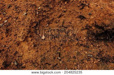 Clay soil. Clay earth. Clay background. Yellow soil. Brown soil. Grunge clay soil.