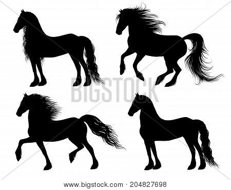 Set of 4 friesian horse silhouettes, different allures