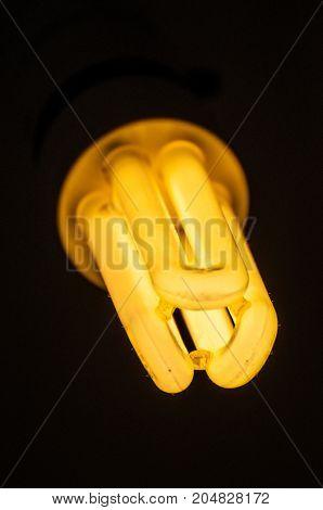 energy saving light bulb illuminated on black background