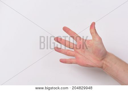 Hand Isolated On Light Grey Background, Copy Space.