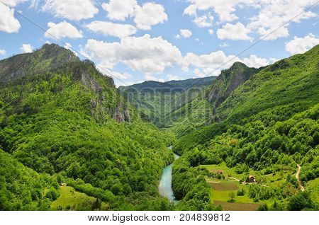 The canyon of the Tara River: a rare oasis of untouched nature, Montenegro