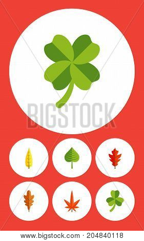 Flat Icon Leaves Set Of Maple, Aspen, Frond And Other Vector Objects