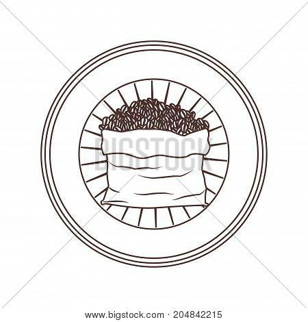 logo badge circular decorative of bag with coffee beans striped brown silhouette on white background vector illustration