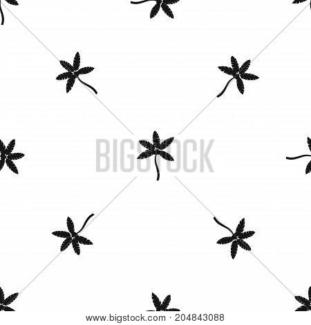 Palm tree with coconuts pattern repeat seamless in black color for any design. Vector geometric illustration