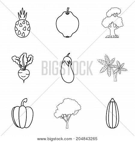 Market garden icons set. Outline set of 9 market garden vector icons for web isolated on white background