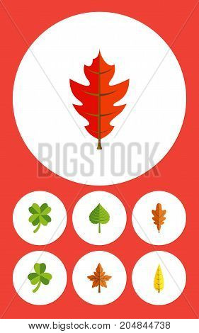 Flat Icon Maple Set Of Leafage, Frond, Linden And Other Vector Objects