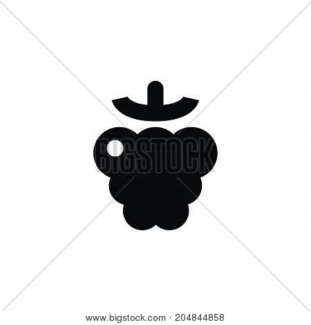 Shrubby Plant Vector Element Can Be Used For Razz, Raspberry, Berry Design Concept.  Isolated Berry Icon.