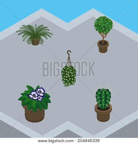 Isometric Houseplant Set Of Flowerpot, Peyote, Blossom And Other Vector Objects
