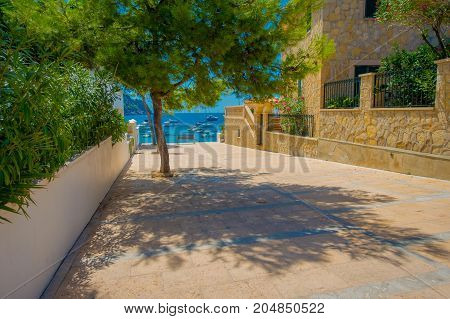 Beautiful view of Sant Elm City, quaint shopping street in the small town of San Telmo, Mallorca with a tree in front, in Spain.