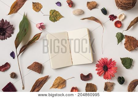 Autumn Background With Small Notebook