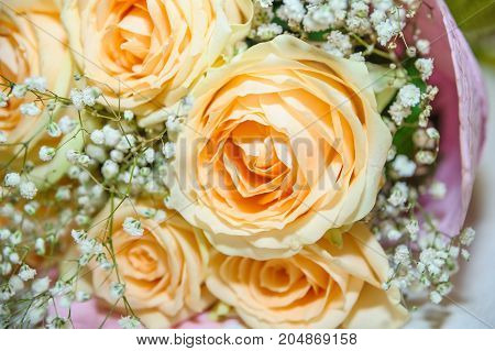 A beautiful bouquet of roses gentle peach color is on the table covered with a tablecloth