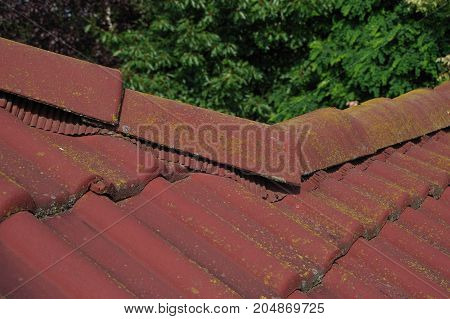 Dirty roof tiles with moss problem. Cleaning required.