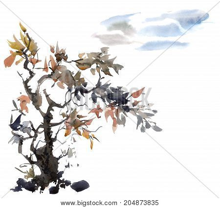 Watercolor and ink illustration of tree and sky style sumi-e u-sin. Oriental traditional painting.