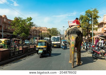 JAIPUR RAJASTHAN INDIA - MARCH 11 2016: Horizontal picture of tuk tuk and elephant riding sharing the same street in Jaipur known as pink city of Rajasthan in India.