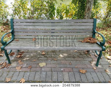 wood bench in a park with water and fallen leaves