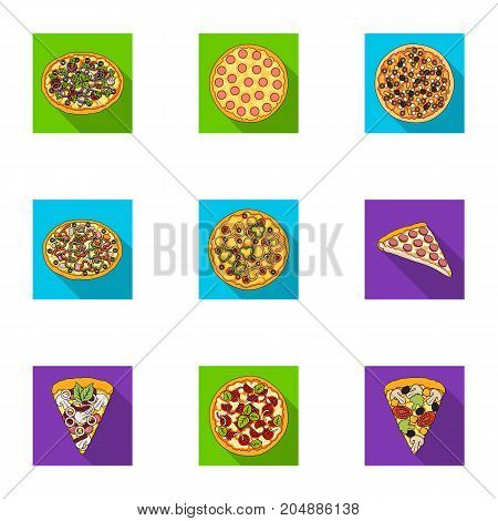 Pizza, slice with meat, cheese and other filling. Different pizza set collection icons in flat style vector symbol stock illustration .