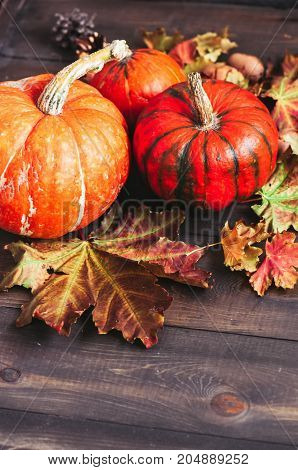 Three Three Different Size Pumpkins With Maple Leaves On A Wooden Background. Toned.different Size P