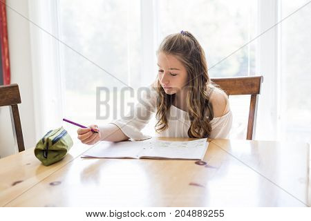 A cute teen girl doing homework at home