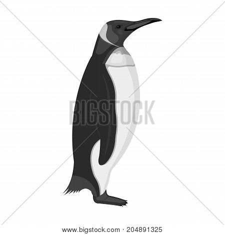 Penguin, flightless sea bird. The Imperial Penguin single icon in monochrome style vector symbol stock illustration .