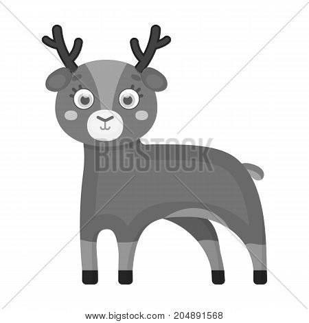 Deer, single icon in monochrome style.Deer vector symbol stock illustration .