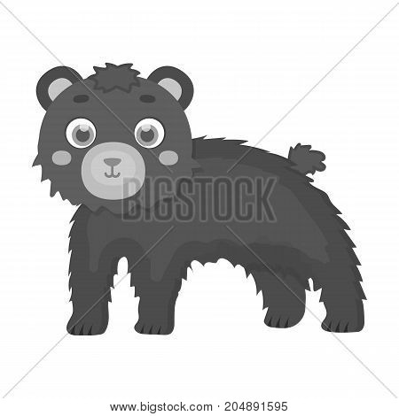 Bear, single icon in monochrome style.Bear, vector symbol stock illustration .