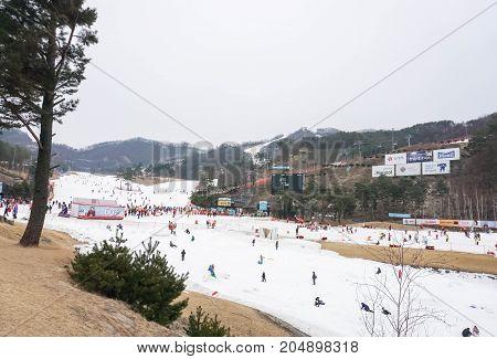 people go play ski in winter taken in ski resort Seoul South Korea on 22 February 2017