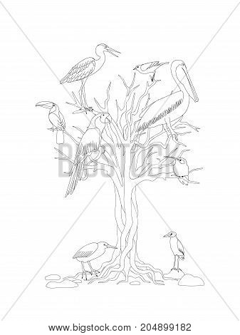 Coloring page with tree and tropical birds for kids and adult coloring book album tutorials. Print for home art decorate wall. Black and white outline illustration. eps 10