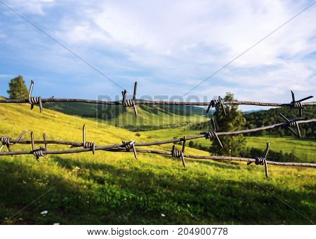 Barbed wire closes access to a beautiful landscape. The desire to receive the forbidden.