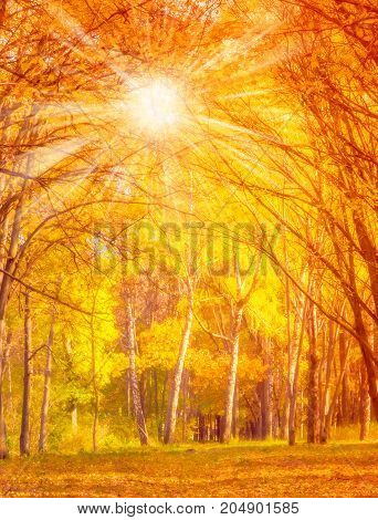 Autumn Leaves Vintage Nature Background