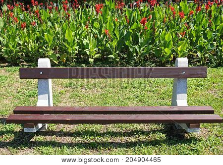 Bench in the park with flowers in summer