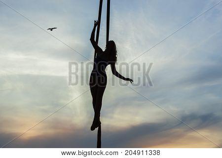 Acrobatics on aerial silk performs acrobatic stunts.