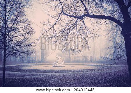 Autumn Mist In Ducale Park In Parma