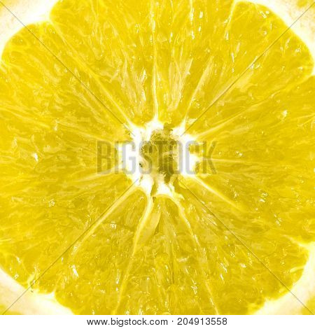 Details of skin and texture of a lemon slice. Extreme close-up. Ideas for background.