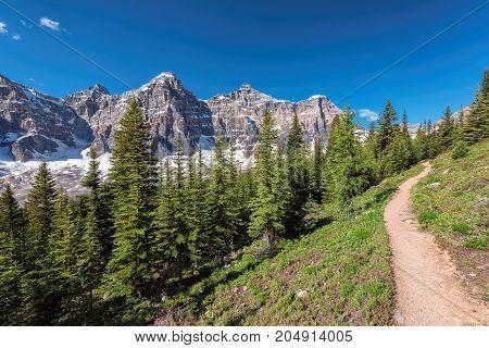 Fragment of Moraine Lake trail in Banff National Park, Alberta, Canada.