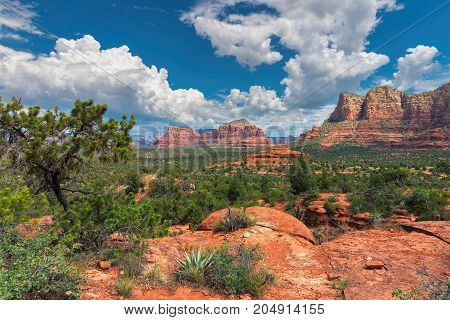 The view of Cathedral Rock in Sedona, Arizona. The towering rock formations stand out like beacons in the dimmed landscap