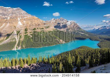 Turquoise waters of Peyto Lake, Banff National Park, Canadian Rockies.