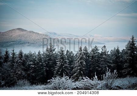 Frosty morning in the mountains. The fog that sits above the valley.