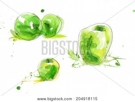 Green and yellow watercolor Red and pinl fresh apples