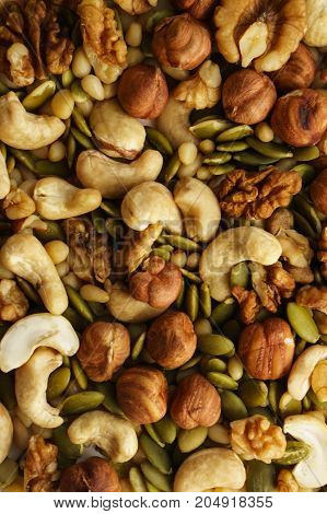 Nut mixture: cashew, walnut, cedar nut, hazelnut, pumpkin seed