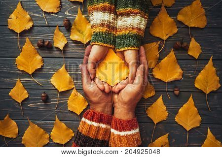 Autumn Couple Holding Yellow Ash Leaf,embrace Hands Top View.autumnal Relationship Family Love Conce