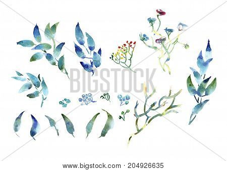 Hand drawing watercolor blue and purple leaves ornament