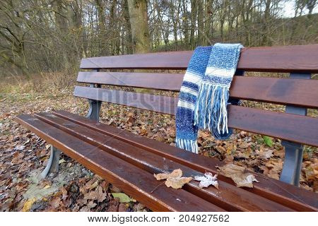 bench with frost on autumn leaves and a woolen scarf in a forest